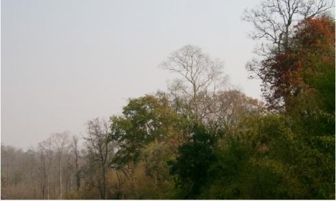 Rampur Village